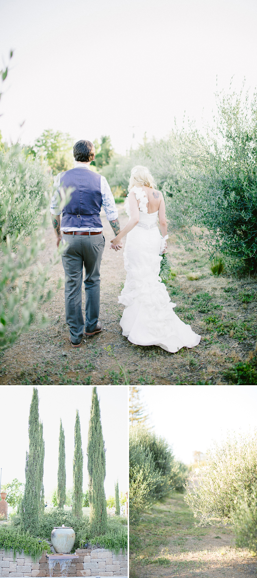 olive grove wedding, bride and groom olive grove, fine art wedding portraits, gorgeous bride and groom, paso robles wedding, central coast wedding photographer, southern california fine art wedding photographer, vintage wedding, western themed wedding, victorian themed wedding, ranch wedding, farm wedding, fine art wedding photography, fine art wedding photographer, photography similar to jose villa