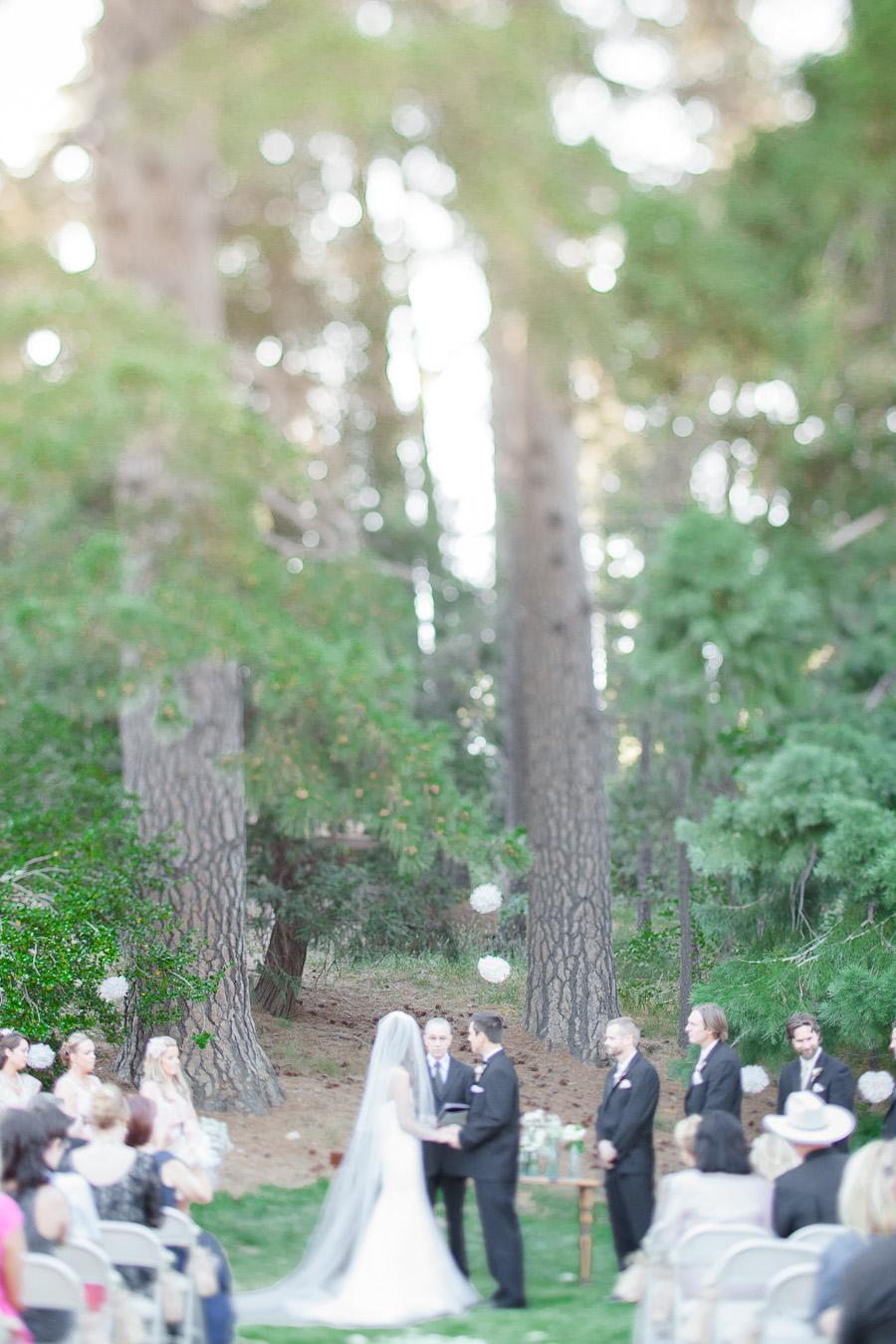 fine art wedding photography, forest wedding, lake arrowhead wedding, big bear wedding, fine art wedding portraiture, soft light